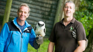 Robson Green at the Cumberland Bird of Prey Centre